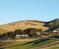 2010leithenvalleynewzealand098.jpg